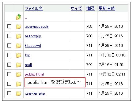 xserver publec html
